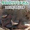 Thumbnail of post image 087