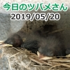 Thumbnail of post image 033