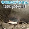 Thumbnail of post image 177