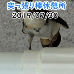 Thumbnail of related posts 059