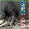 Thumbnail of post image 149