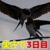 Thumbnail of post image 168